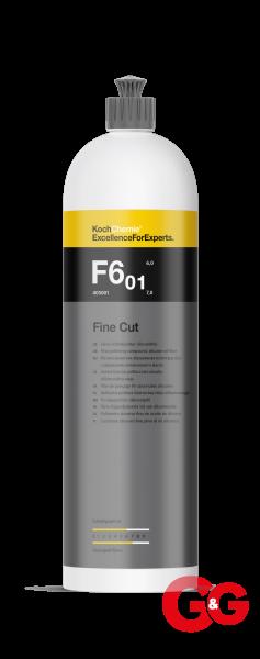 Fine_Cut_F6_01_10L_tif.png